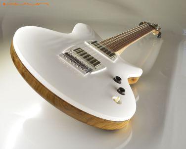 ele roxy guitar 2