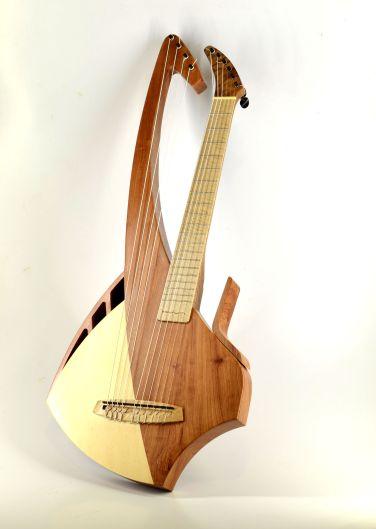 harpDSC0107